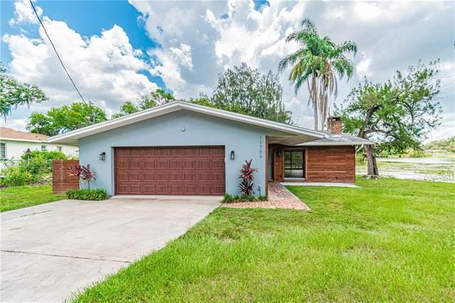 11709 N Rome Avenue, Tampa, FL 33612 (MLS #T3251506) :: Armel Real Estate