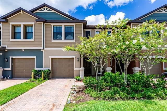 16958 Storyline Drive, Land O Lakes, FL 34638 (MLS #T3251539) :: Pepine Realty