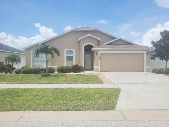 10609 Carloway Hills Drive, Wimauma, FL 33598 (MLS #T3251540) :: Your Florida House Team