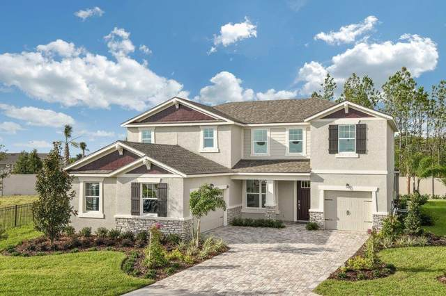 11710 Wrought Pine Loop, Riverview, FL 33569 (MLS #T3251554) :: Griffin Group