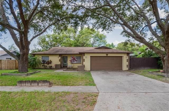 2805 Ebony Place, Seffner, FL 33584 (MLS #T3251557) :: EXIT King Realty