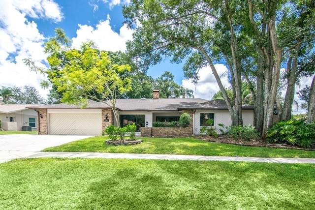 12413 Stillwater Terrace Drive, Tampa, FL 33618 (MLS #T3251562) :: Team Bohannon Keller Williams, Tampa Properties