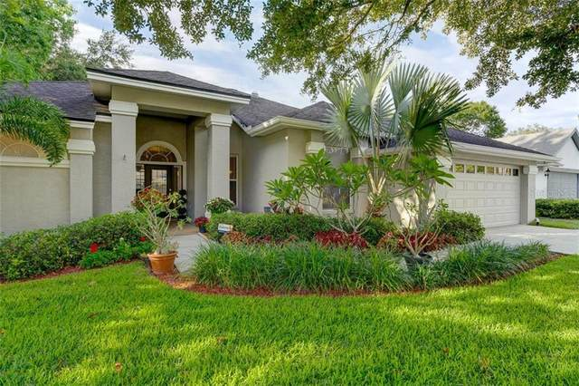 5423 Pine Bay Drive, Tampa, FL 33625 (MLS #T3251565) :: Griffin Group