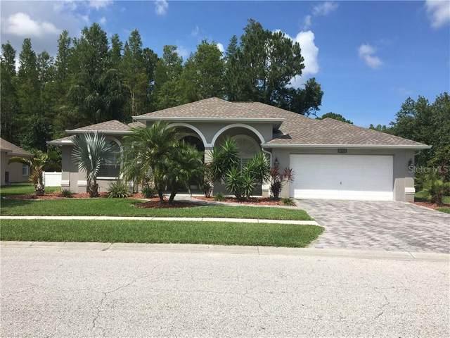 1205 Maravista Drive, Trinity, FL 34655 (MLS #T3251570) :: Pepine Realty