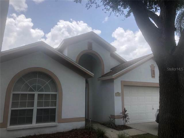 3308 Red Mulberry Court, Tampa, FL 33618 (MLS #T3251616) :: The Duncan Duo Team
