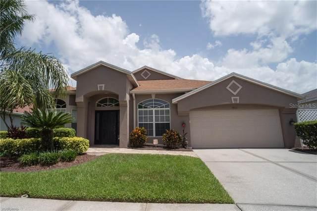 1803 Tangledvine Drive, Wesley Chapel, FL 33543 (MLS #T3251631) :: Bridge Realty Group
