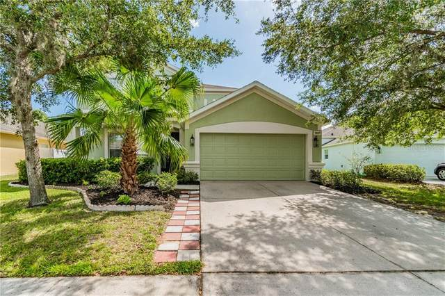 3537 Fortingale Drive, Wesley Chapel, FL 33543 (MLS #T3251637) :: The Robertson Real Estate Group