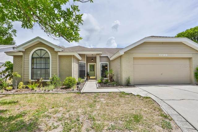 12119 Wildbrook Drive, Riverview, FL 33569 (MLS #T3251640) :: Frankenstein Home Team