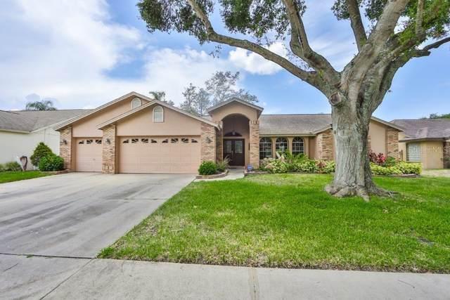 2719 Brianholly Drive, Valrico, FL 33596 (MLS #T3251644) :: Dalton Wade Real Estate Group