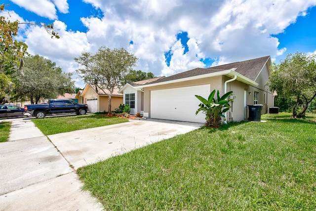 11119 Shadybrook Drive, Tampa, FL 33625 (MLS #T3251659) :: Griffin Group
