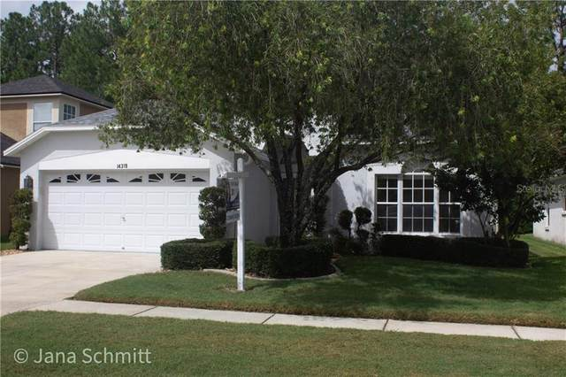 14319 Sky Flower Lane, Tampa, FL 33626 (MLS #T3251678) :: Florida Real Estate Sellers at Keller Williams Realty