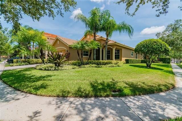 14623 Mirasol Manor Court, Tampa, FL 33626 (MLS #T3251688) :: Florida Real Estate Sellers at Keller Williams Realty