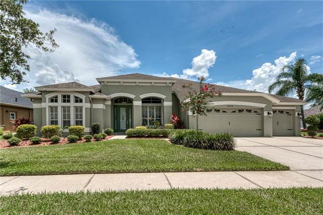 30350 Colehaven Court, Wesley Chapel, FL 33543 (MLS #T3251691) :: Premium Properties Real Estate Services