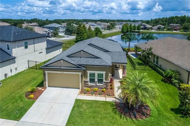 30433 Pecan Valley Loop, Wesley Chapel, FL 33543 (MLS #T3251713) :: The Robertson Real Estate Group