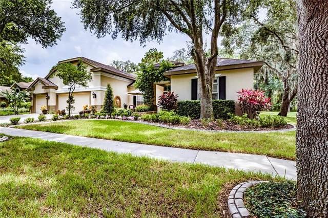 5909 Jaegerglen Drive, Lithia, FL 33547 (MLS #T3251736) :: Realty Executives Mid Florida