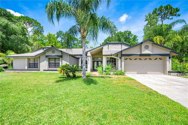 30 Windrush Court, Oldsmar, FL 34677 (MLS #T3251740) :: Dalton Wade Real Estate Group