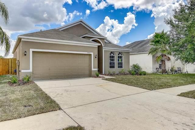 24716 Portofino Drive, Lutz, FL 33559 (MLS #T3251741) :: Team Bohannon Keller Williams, Tampa Properties
