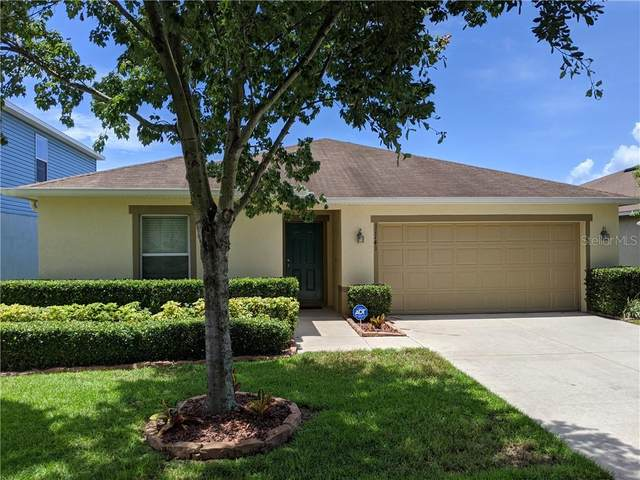 11141 Running Pine Drive, Riverview, FL 33569 (MLS #T3251743) :: Griffin Group