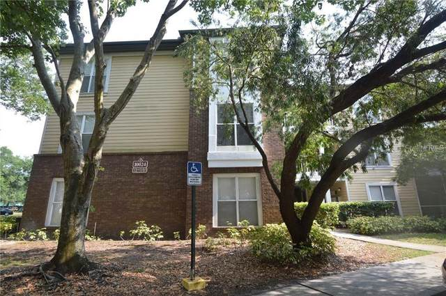 10024 Strafford Oak Court #802, Tampa, FL 33624 (MLS #T3251748) :: Carmena and Associates Realty Group