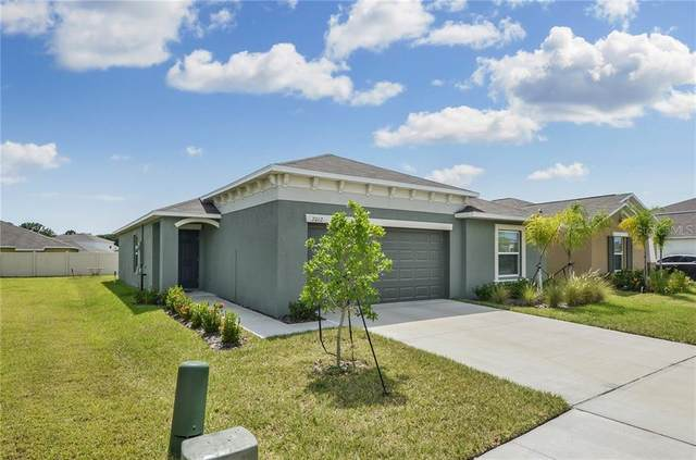 7012 Wiseman Run Drive, Ruskin, FL 33573 (MLS #T3251767) :: Alpha Equity Team