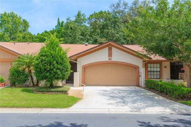 3953 Shoreside Circle, Tampa, FL 33624 (MLS #T3251778) :: Pepine Realty