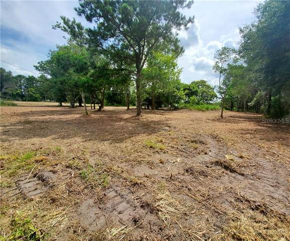 29040 Johnston Road, Dade City, FL 33523 (MLS #T3251783) :: Pepine Realty