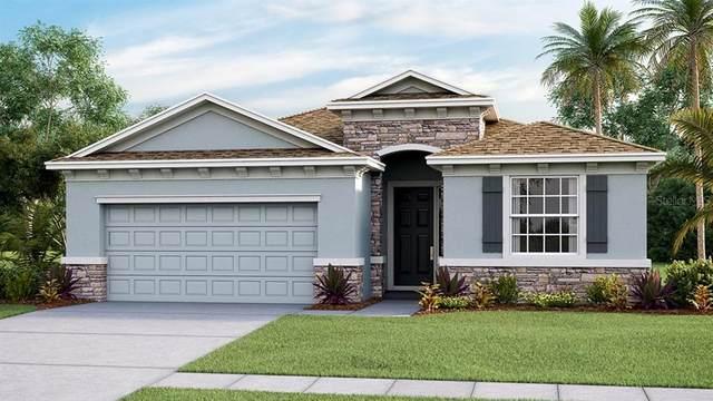 10943 Tally Fawn Loop, San Antonio, FL 33576 (MLS #T3251846) :: Burwell Real Estate