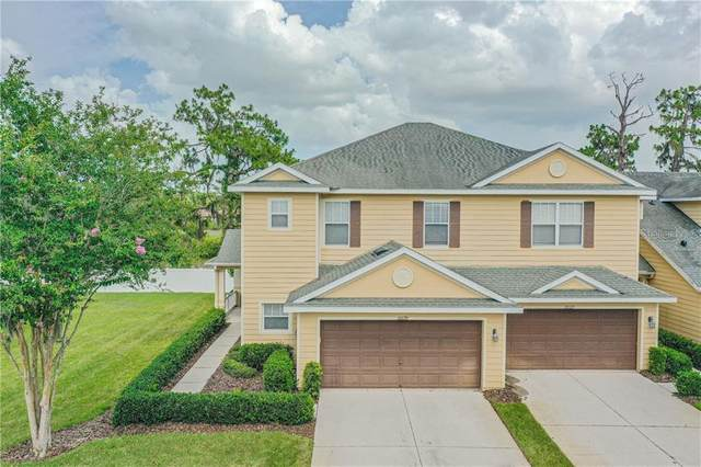 20129 Indian Rosewood Drive, Tampa, FL 33647 (MLS #T3251850) :: GO Realty