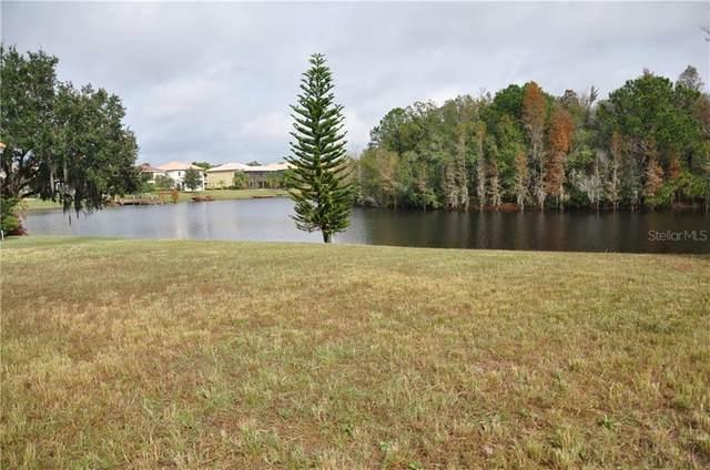 10535 Bermuda Isle Drive, Tampa, FL 33647 (MLS #T3251864) :: Team Bohannon Keller Williams, Tampa Properties