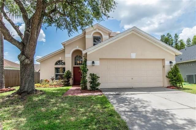 1503 Maximilian Drive, Wesley Chapel, FL 33543 (MLS #T3251891) :: Cartwright Realty