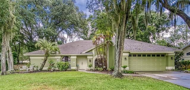 2886 Hammock Drive, Plant City, FL 33566 (MLS #T3251895) :: Sarasota Home Specialists