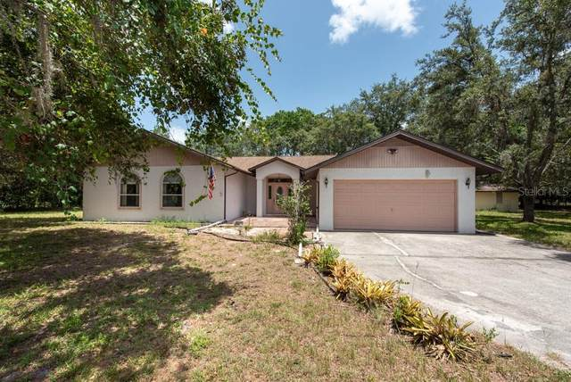 10406 Indian Mound Drive, New Port Richey, FL 34654 (MLS #T3251896) :: Heart & Home Group