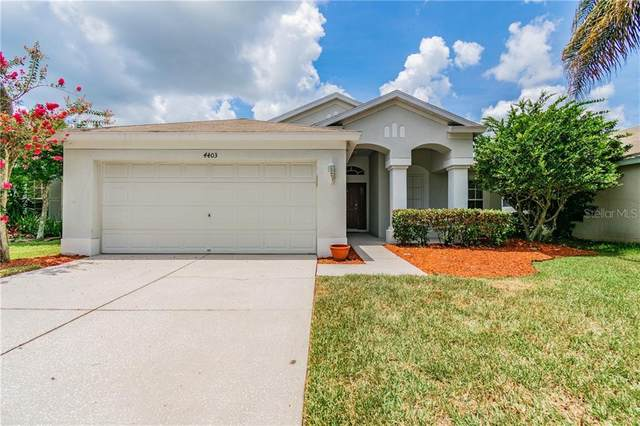 4403 Marchmont Boulevard, Land O Lakes, FL 34638 (MLS #T3251906) :: GO Realty