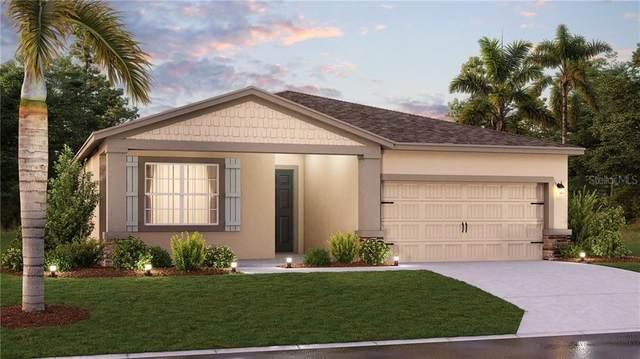 1719 Chatsworth Circle, Saint Cloud, FL 34771 (MLS #T3251907) :: Dalton Wade Real Estate Group