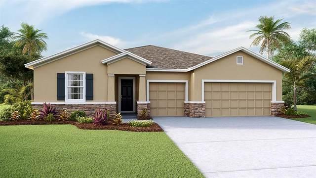 10916 Laxer Cay Loop, San Antonio, FL 33576 (MLS #T3251910) :: Burwell Real Estate