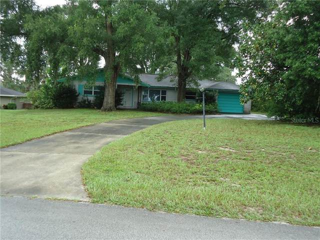34752 Orchid Parkway, Dade City, FL 33523 (MLS #T3251921) :: Rabell Realty Group
