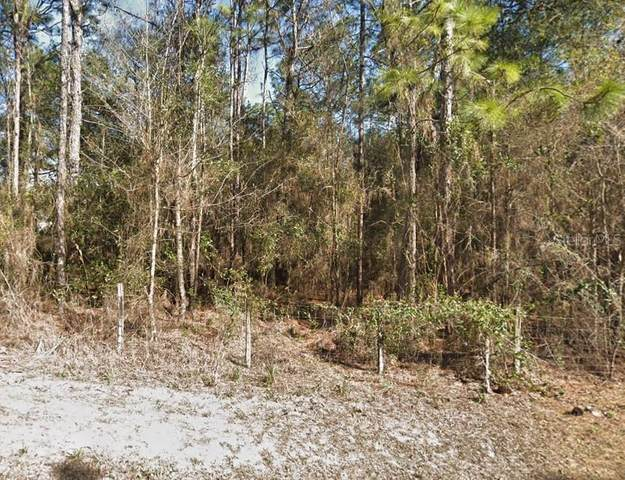 6260 Drew Street, Brooksville, FL 34604 (MLS #T3251946) :: Griffin Group