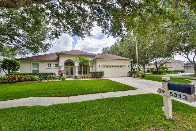 5313 Twin Creeks Drive, Valrico, FL 33596 (MLS #T3251972) :: Pristine Properties