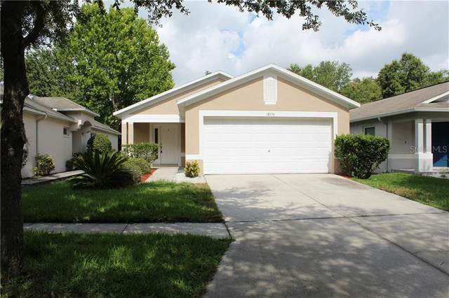 18156 Canal Pointe Street, Tampa, FL 33647 (MLS #T3252017) :: CENTURY 21 OneBlue