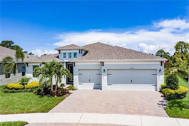 6510 Maiden Sea Drive, Apollo Beach, FL 33572 (MLS #T3252029) :: Tuscawilla Realty, Inc
