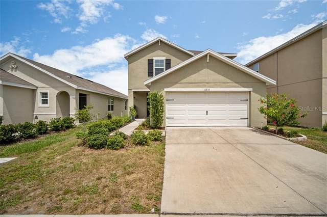 12110 Fawn Brindle Street, Riverview, FL 33578 (MLS #T3252051) :: Alpha Equity Team
