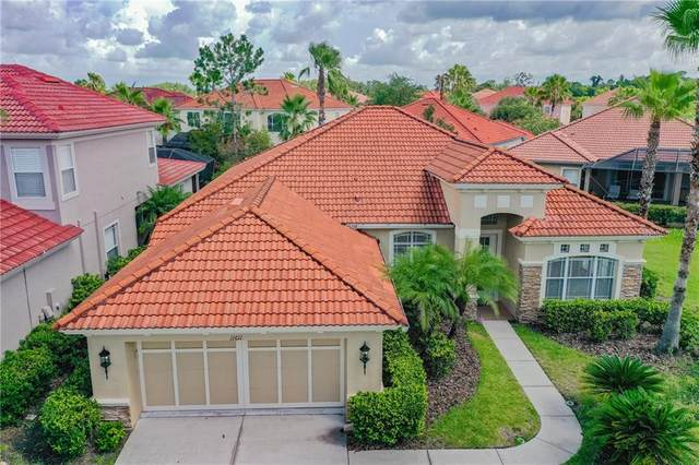 11611 Bristol Chase Drive, Tampa, FL 33626 (MLS #T3252057) :: Griffin Group