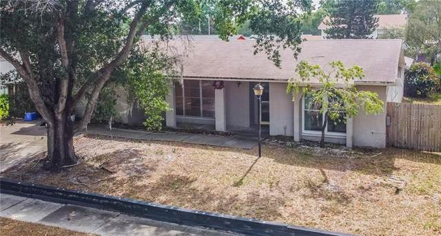 12509 Limpet Drive, Tampa, FL 33625 (MLS #T3252063) :: Carmena and Associates Realty Group