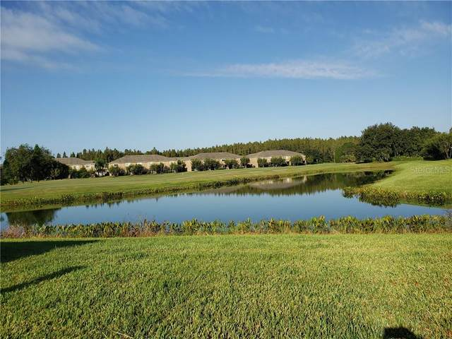 18124 Paradise Point Drive, Tampa, FL 33647 (MLS #T3252079) :: GO Realty
