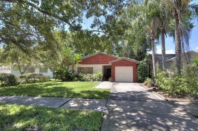 502 E Davis Boulevard, Tampa, FL 33606 (MLS #T3252086) :: Carmena and Associates Realty Group