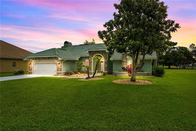 9285 Lafayette Court, Weeki Wachee, FL 34613 (MLS #T3252104) :: Cartwright Realty