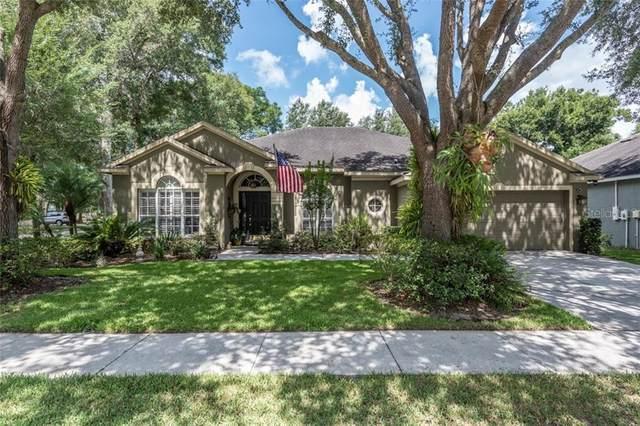 1602 Hidden Meadow Court, Valrico, FL 33594 (MLS #T3252116) :: Charles Rutenberg Realty