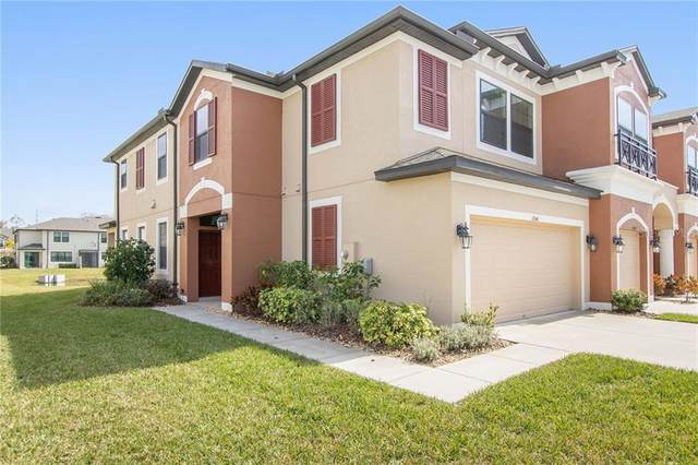 11541 Crowned Sparrow Lane, Tampa, FL 33626 (MLS #T3252119) :: Griffin Group