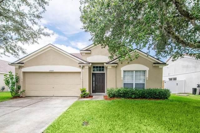 28849 Stormcloud Pass, Wesley Chapel, FL 33543 (MLS #T3252120) :: Griffin Group