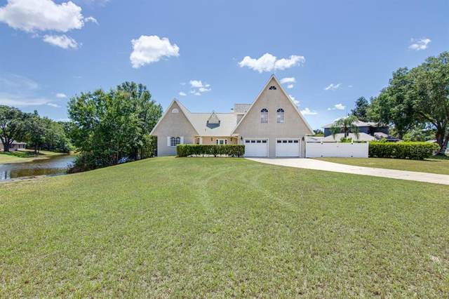 23310 Cascade Place, Land O Lakes, FL 34639 (MLS #T3252151) :: Rabell Realty Group
